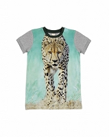 Army-Cheetah From Wild